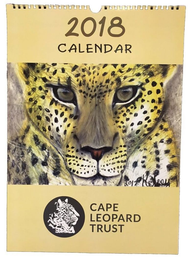 A New Year Begins with the 'Essence of a Leopard'