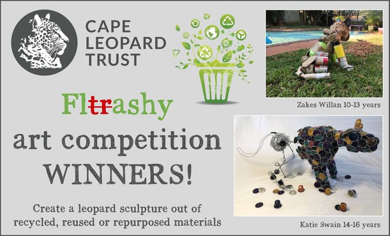CLT Environmental Education 2020 Art Competition
