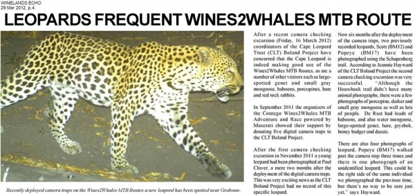 Leopards Frequent Wines2Whales MTB route