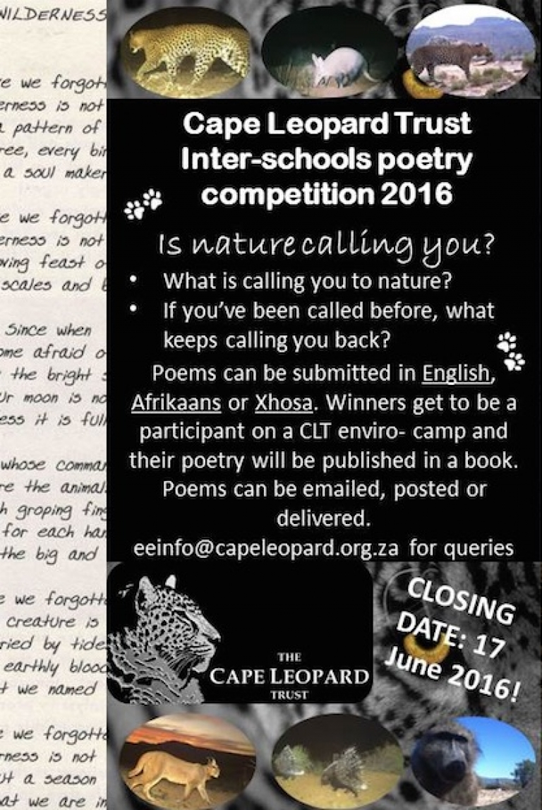 "Launching our Poetry Competition, ""Is Nature Calling You?"""