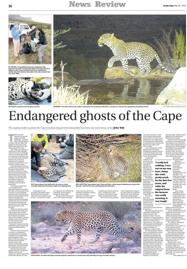 Endangered Ghosts of the Cape