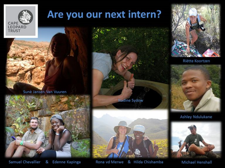 Internship position for Cederberg Campsite Assistant