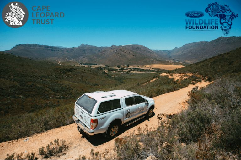 Ford Wildlife Foundation supports The Cape Leopard Trust