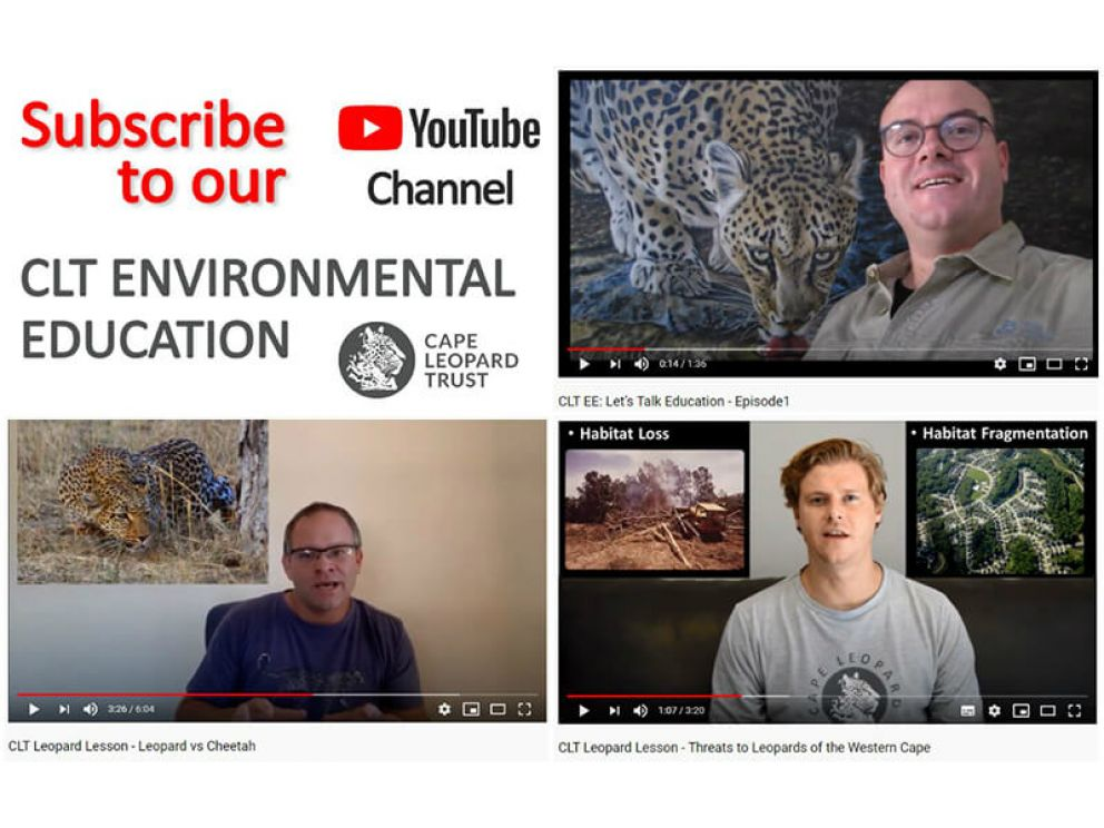 Special News from the CLT Environmental Education Team