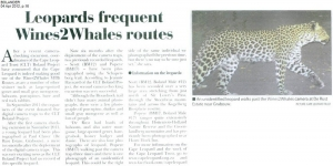 Leopard Frequent Wines2Whales Routes