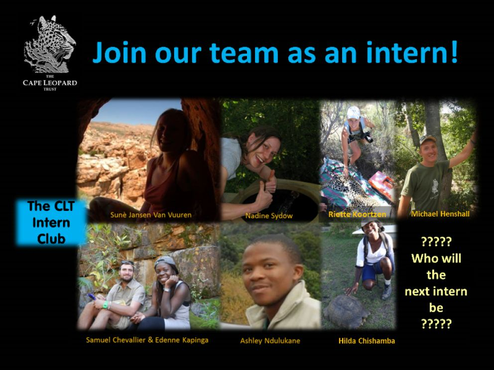 Join our team as an intern! 2017 '4 Days Left to Apply!'