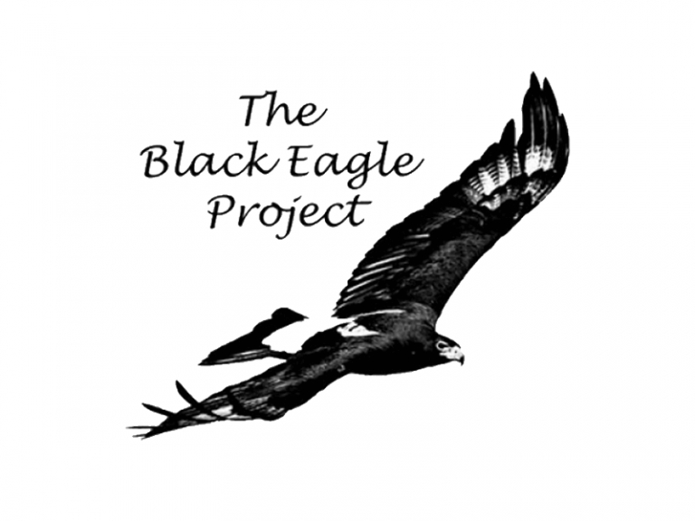 Black Eagle Project