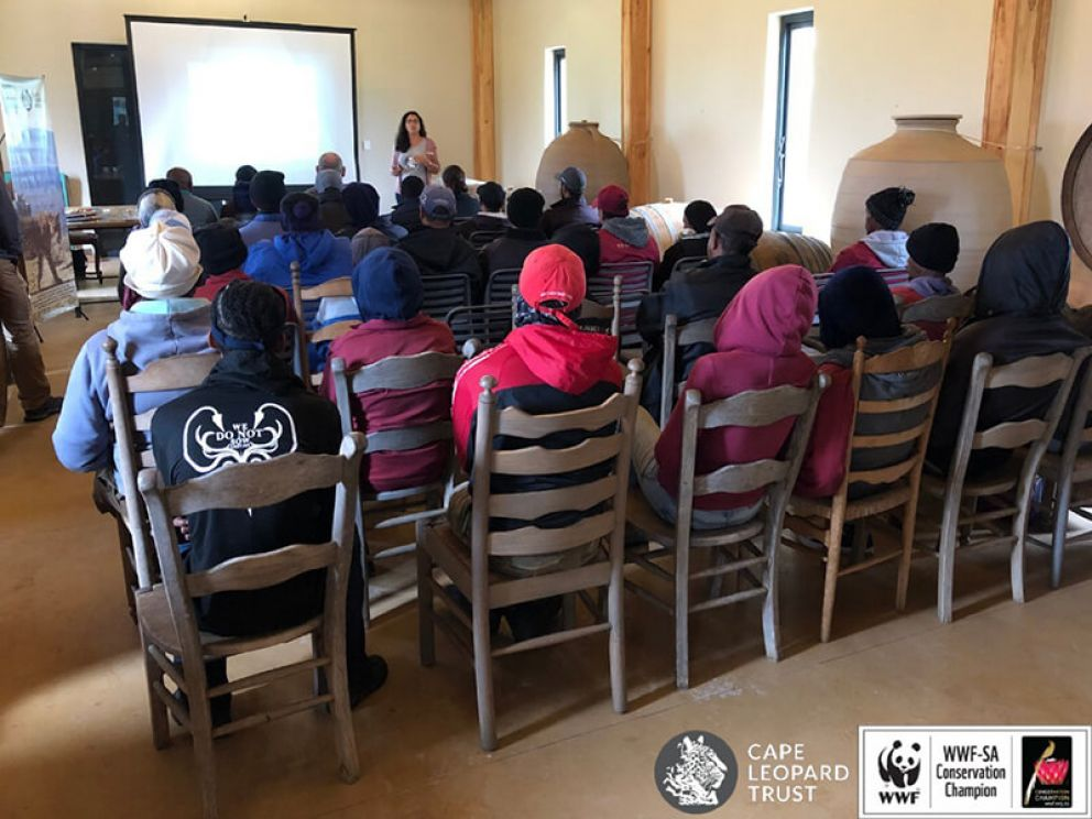 Collaborating with WWF Conservation Champions to aid fynbos fauna conservation